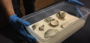 19out2018---museu-nacional-anuncia-resgate-do-cranio-de-luzia-1539969615349_615x300
